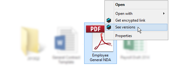 Right click on the file and choose 'see versions' option