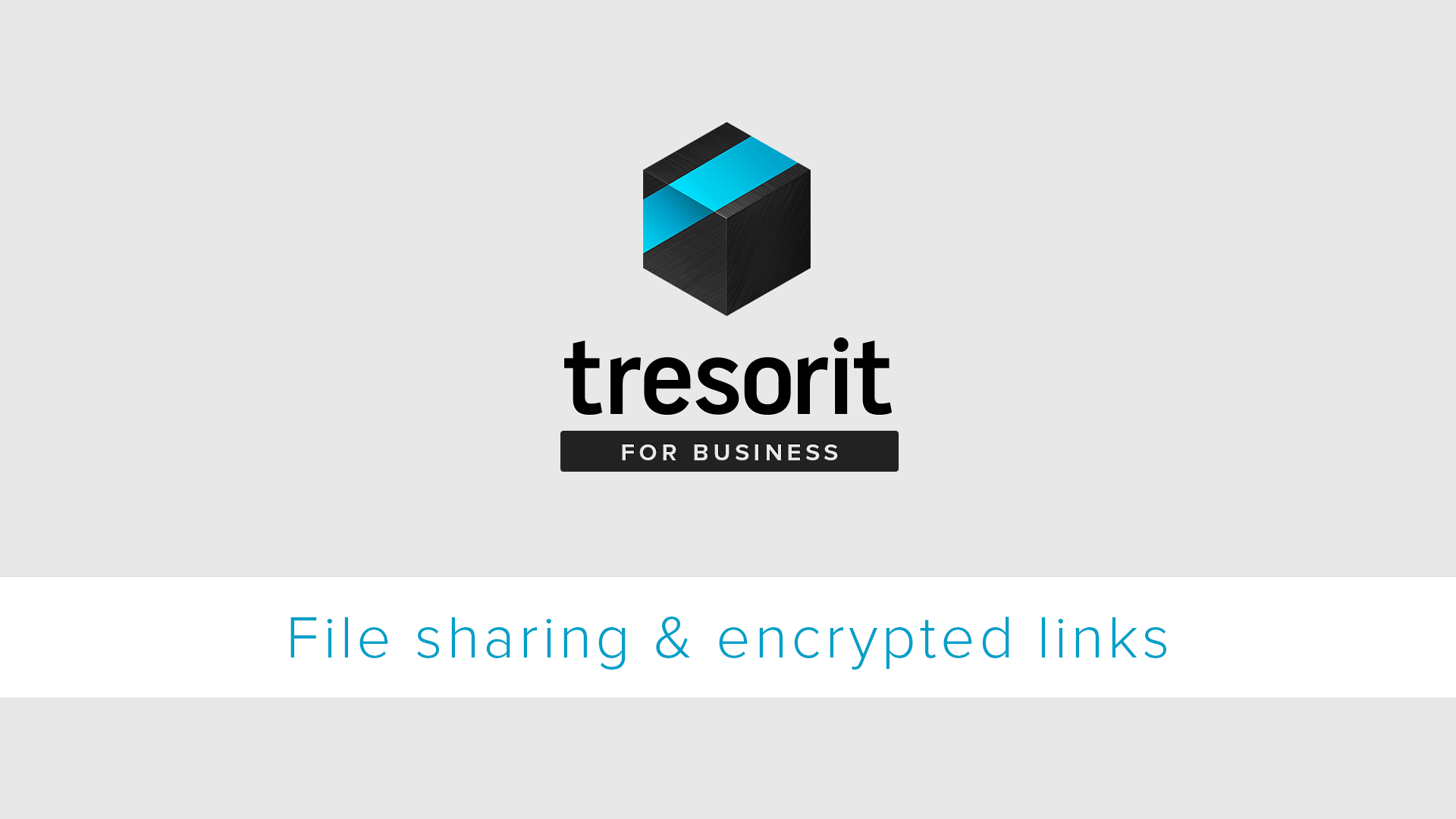 How to Share Large Files Securely With Anyone