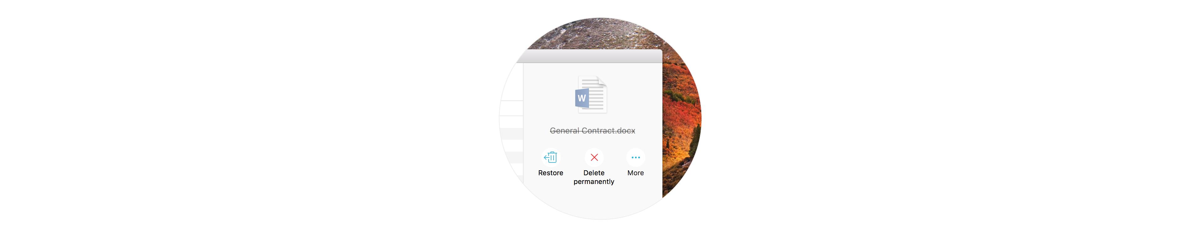 Dateiwiederherstellung: Gelöschte Dateien einfach zurückholen